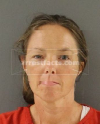 Henna St Clair of Tennessee, arrests, mugshots, charges and